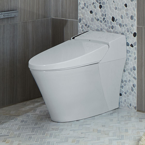 Integrated Bidet Toilette Avec Bidet Intgr At200 De Dxv