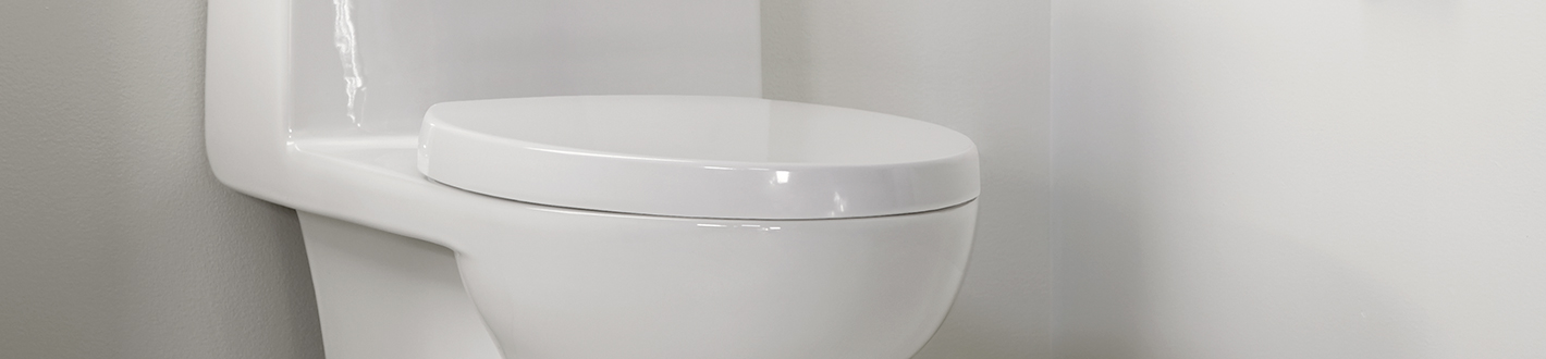 DXV Contemporary Elongated Toilet Seat Banner