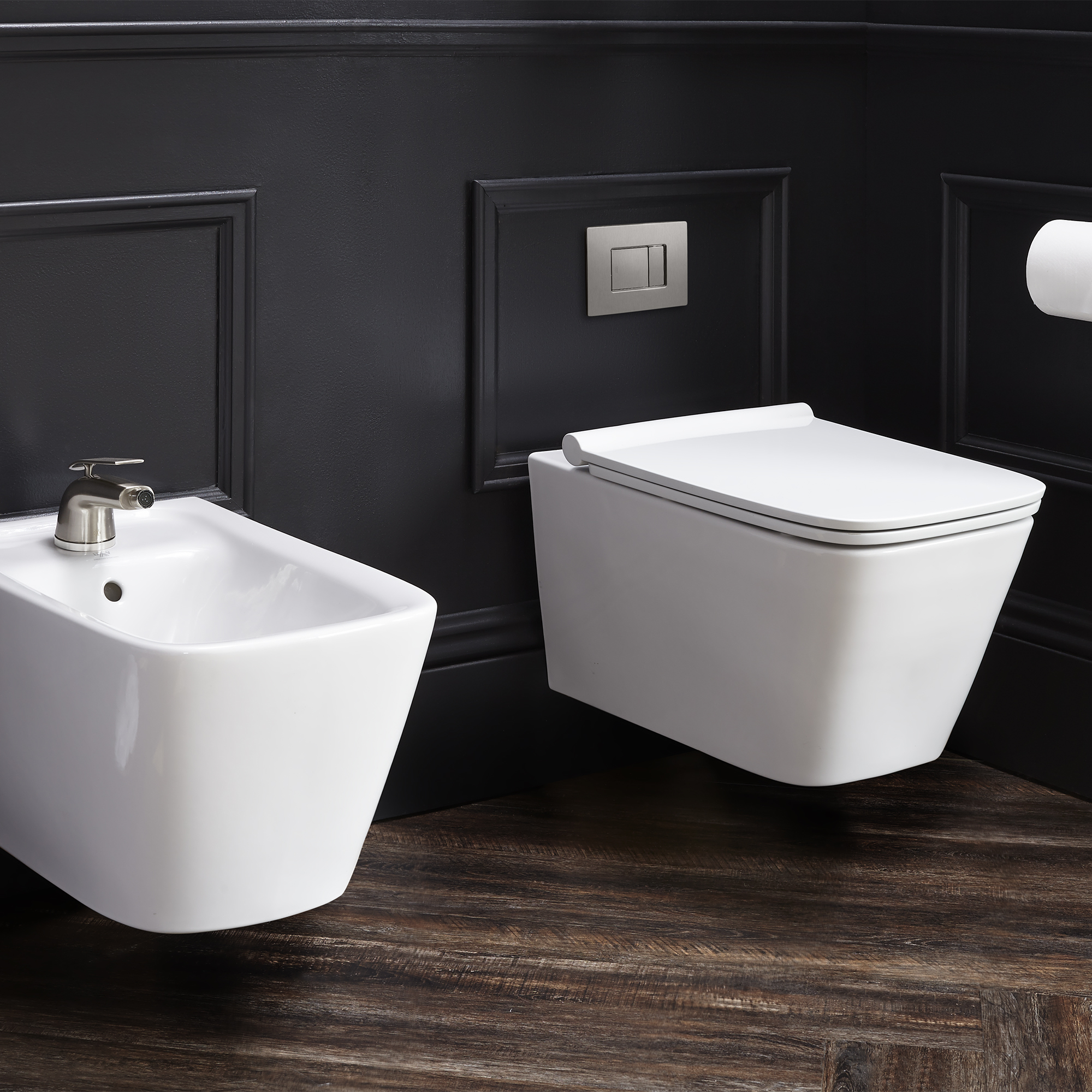 Delicieux DXV Modulus Wall Mounted Elongated Toilet