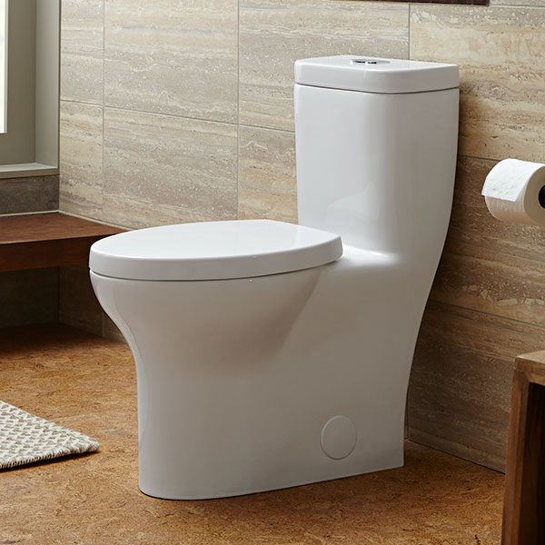 DXV Equility One Piece Elongated Dual Flush Toilet Room Scene- Canvas White