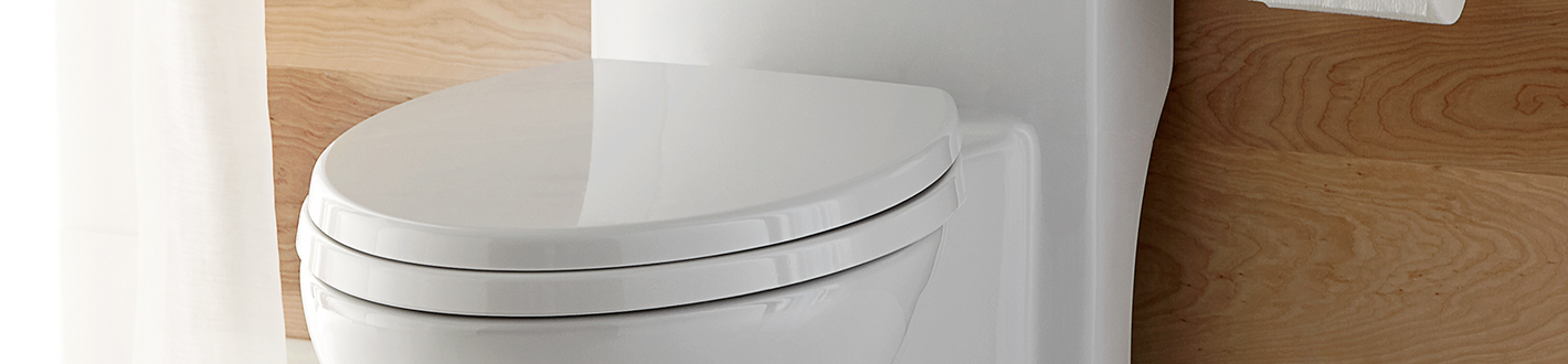 DXV Transitional Elongated Toilet Seat Banner
